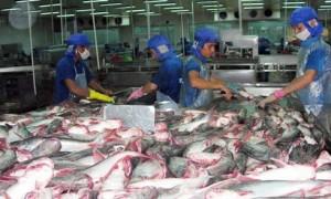 Catfish inspections