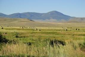 "Ranchland in Gunnison County, preserved ""forever"" by conservation easement"